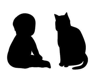 5歳の猫は、人間で言うと何歳でしょう?