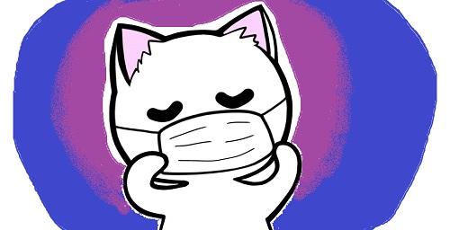 要注意!猫の感染症について